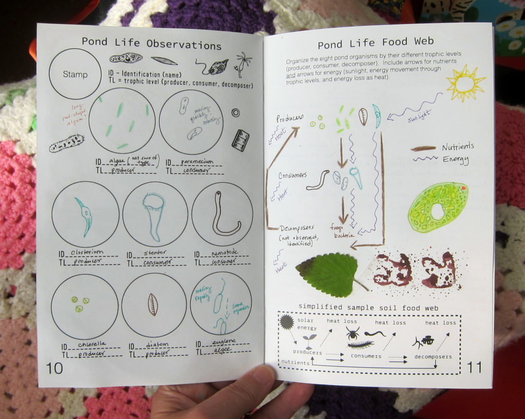 Biology Journa Pond Life
